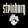 Logo-Steinburg-200-200